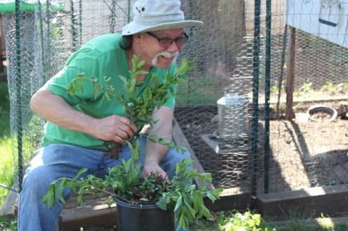 Planting makes us happy!