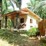 11-Tonpalm-Farmstay-Krabi-Thailand-007