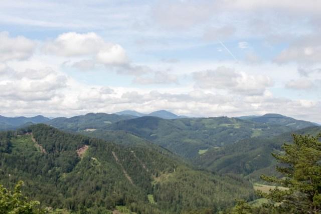 Landscape as seen from the Wiener Wallfahrerweg north of Kieneck. / Kyle Walker