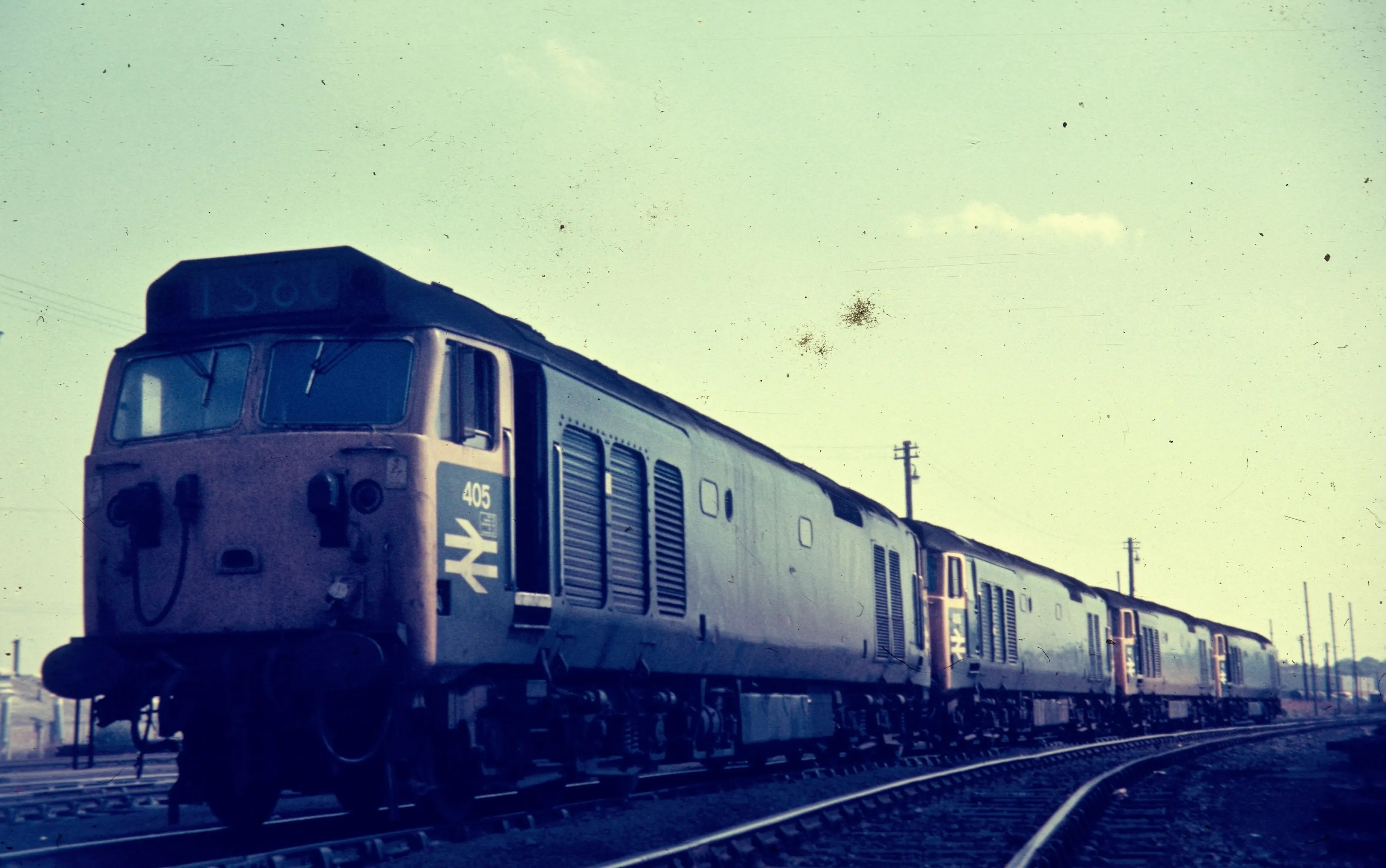 Class 50 diesel locomotivess stabled at Perth