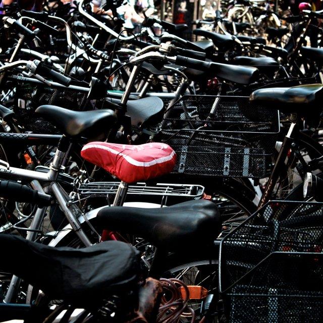 Münster, die Fahrradstadt