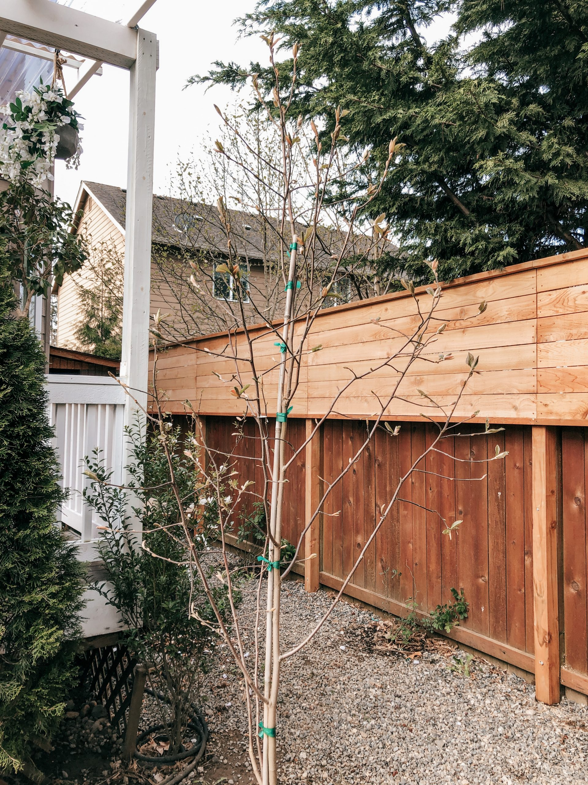 Wood Fence Extension Kits Best Coffee Tables Design Ideas Backyard Privacy Building A Fence Backyard Fences