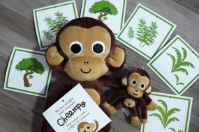 {International Giveaway} Support the cause of Chimpanzees and win Cheempo
