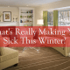 What's Really Making You Sick This Winter?