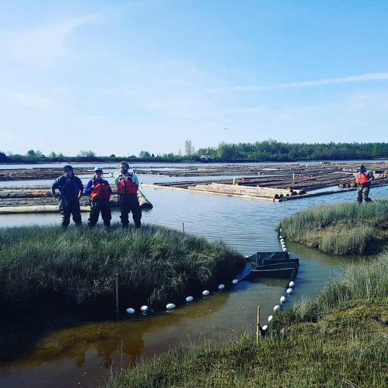 Fraser estuary team working hard! #fykenet