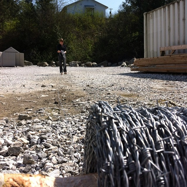 A roll of barbed wire in the foreground, while raincoast scientist staff approaches with more barbed wire across a dusty field next to a shed