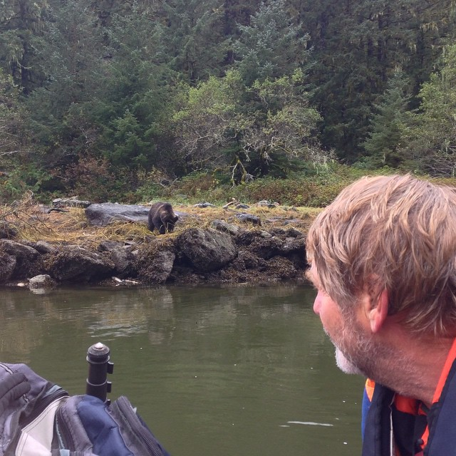 Raincoast Conservation staff Brian Falconer watches grizzly bears on the other side of the river in the Great Bear rainforest