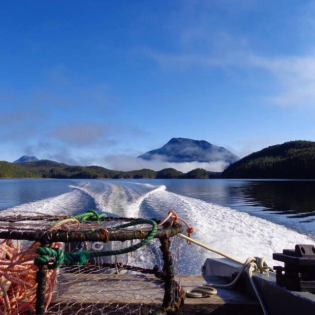 First day back in the field