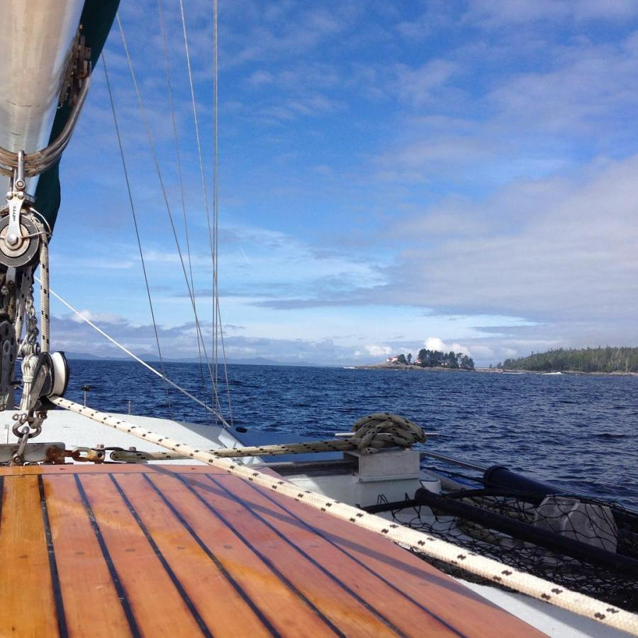 Underway for bear research, view from Raincoast boat Achiever