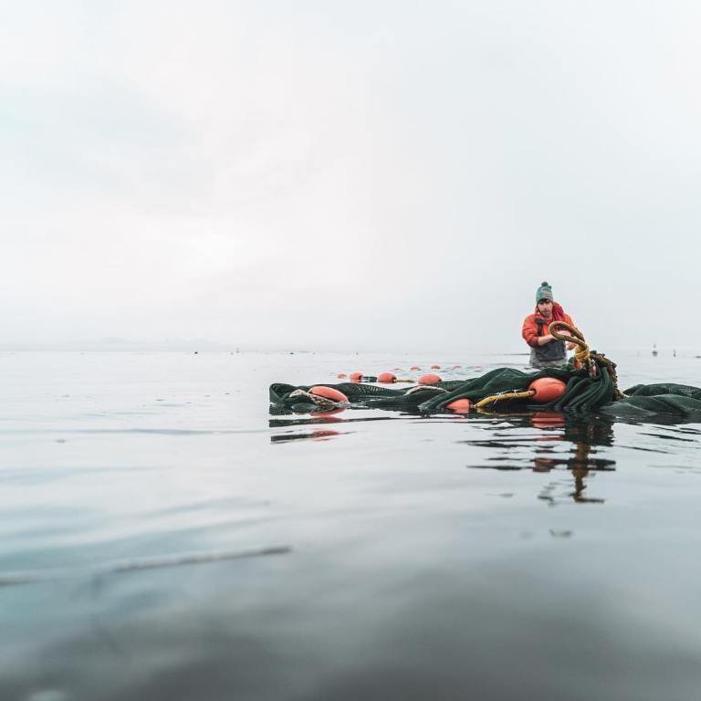 Some great habitat restoration news for salmon