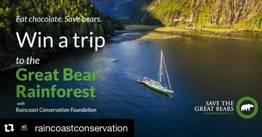 """A sailboat on calm water with text over top saying """"win a trip to the great bear rainforest. Eat chocolate save bears."""""""