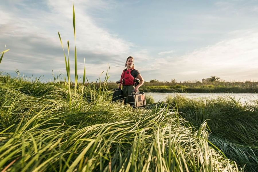 Scientist wearing a red jacket stands with scientific equipment amidst green rushes beside the Fraser River with a sunny blue sky behind her.