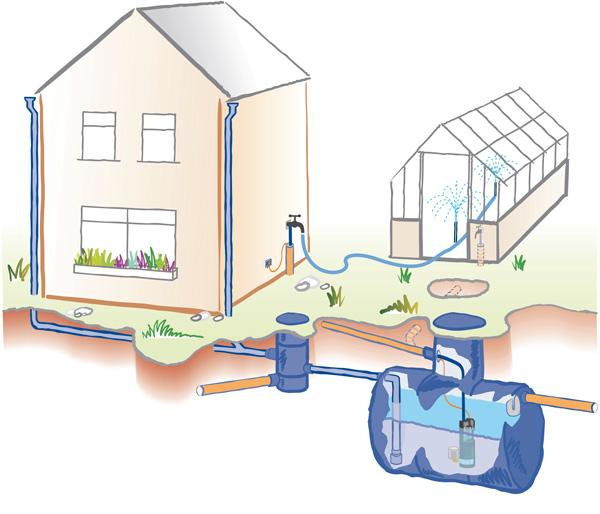 Garden rainwater harvesting