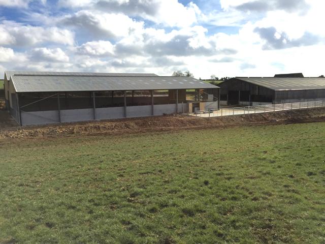 Dairy farm, Wiltshire