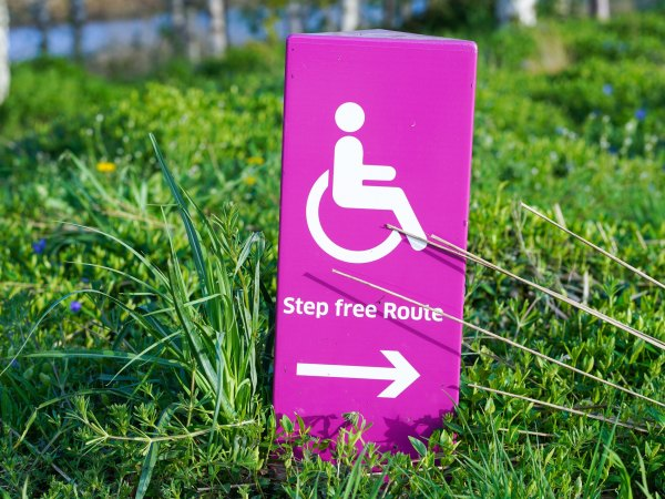 a wheelchair sign on the grass showing the way to a step free route