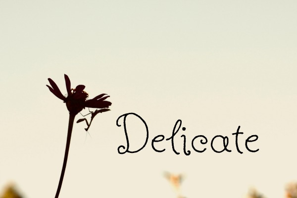 a wilting flower and the word delicate