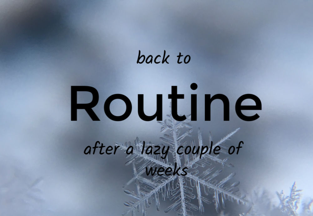 snowflake picture with the words, Back to Routine after a lazy couple of weeks