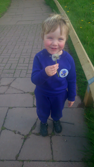 One of my Facebook memories of the Little Man in his purple tracksuit blowing a dandelion clock on his way home from nursery