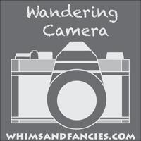wandering camera badge
