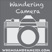 wandering camera badge