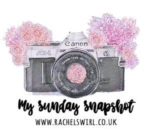 My sunday snapshot blog button