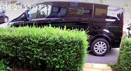 image shows a black Ford Tourneo car behind a hedge.