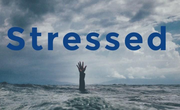 stressed, word of the week