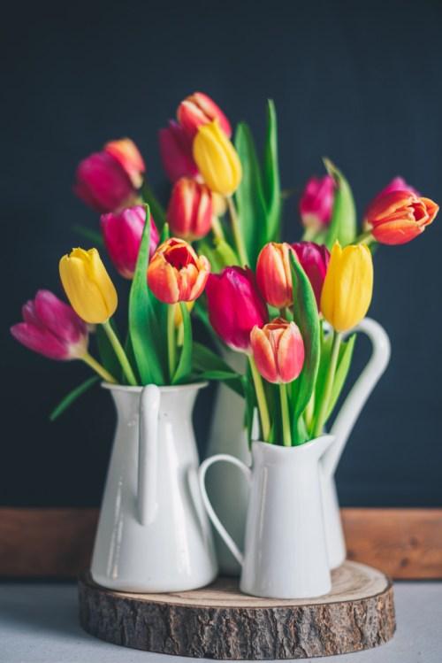 tulips in vases