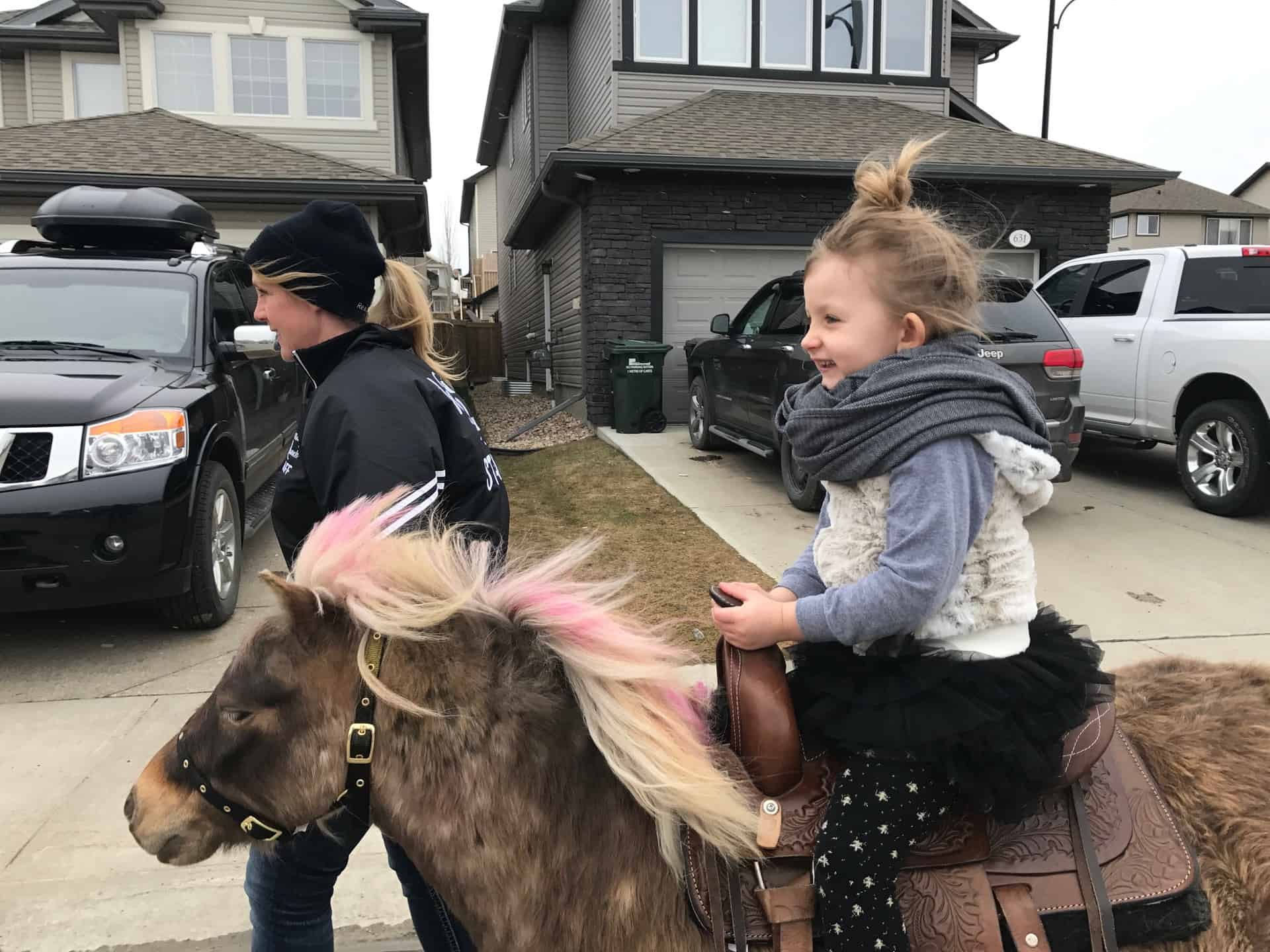 Bring A Pony To Your Party With Mobile Pony Birthday Parties Raising Edmonton