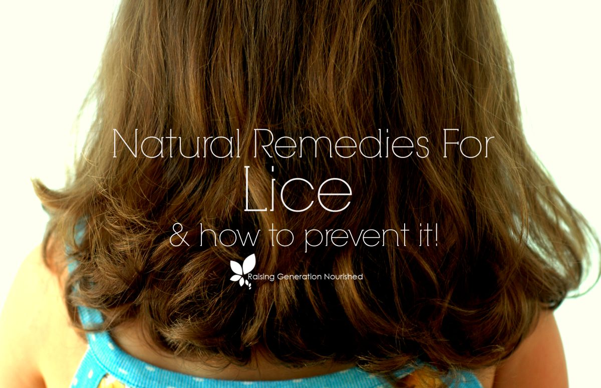 Natural Remedies Archives   Raising Generation Nourished Natural Remedies For Lice   How To Prevent