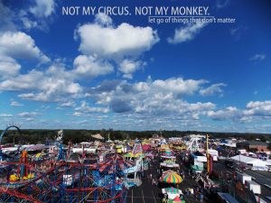 rm not my circus not my monkey