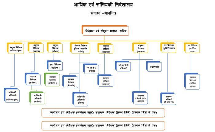 DES Organizational Structure