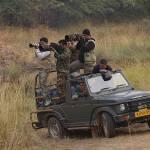 Safari at Ranthambore National-Park