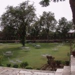 Samode Bagh View