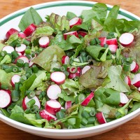 Onion scape and radish salad with honey mustard vinaigrette and grilled pizza
