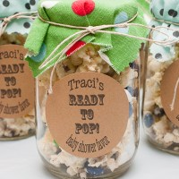 Baby Shower on a Budget!