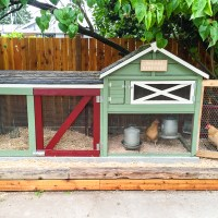 The Great Chicken Coop Remodel of 2015