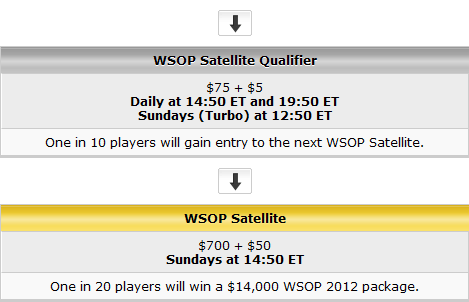 Party Poker & WPT Poker Satellite Path