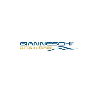 GIANNESCHI