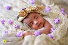 newborn hyderabad