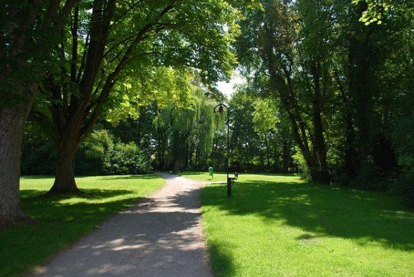 Itinéraire : un parc arboré, chemin en terre et gazon vert