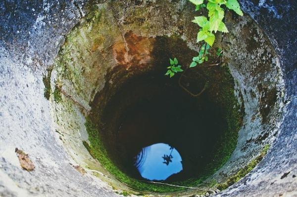 l'environnement fond d'un puits feuilles et eau