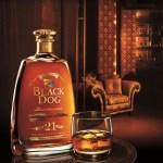 Best Scotch In The World – Black Dog Scotch