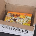 Wishvilla.com
