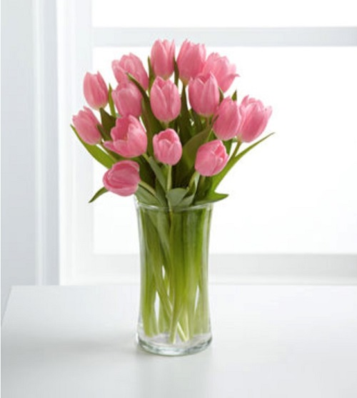 Bouquet of pink tulips in glass vase