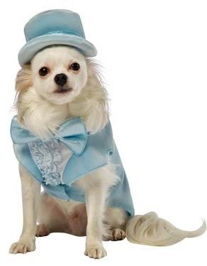 Dumb And Dumber Harry Dunne Dog Costume, $23.86