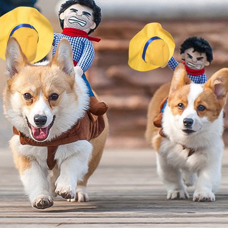 Cowboy Riders Dog Costume