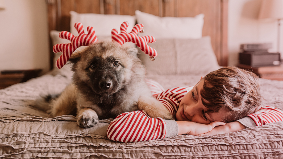 Kid and dog with pajamas