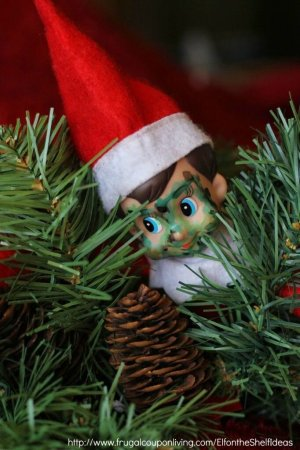 Camouflaged Elf on the shelf