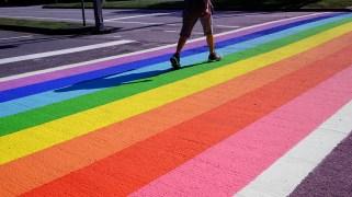 Celebrate Pride Month & Support the LGBTQ+ Community